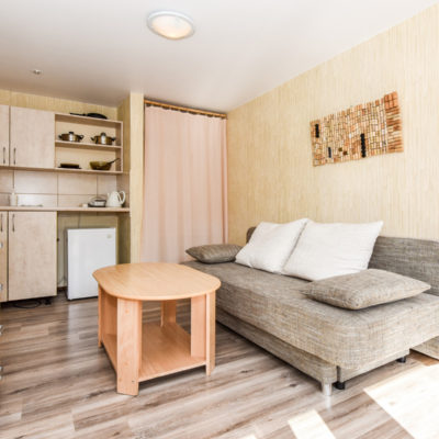 Double room apartment with a terrace, 1st floor